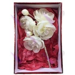 Caja Regalo Orquidea de cera